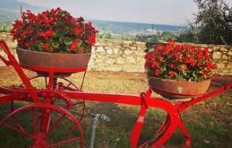 חגים וימי חופשה באיטליה